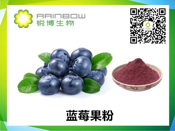 蓝莓果粉研发