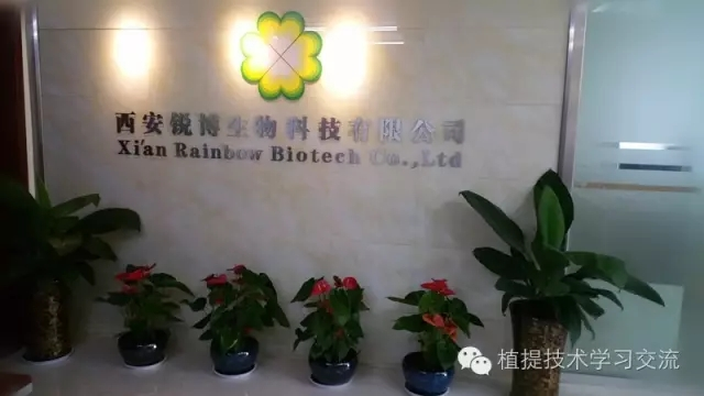 【锐博原创】植物提取物技术分享文章名录