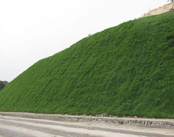 四川边坡绿化