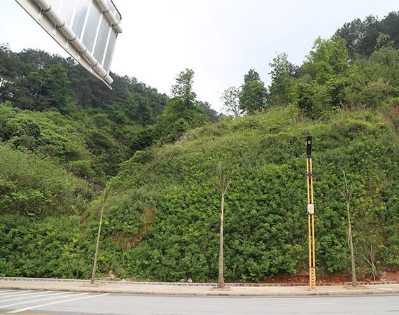 四川边坡绿化施工
