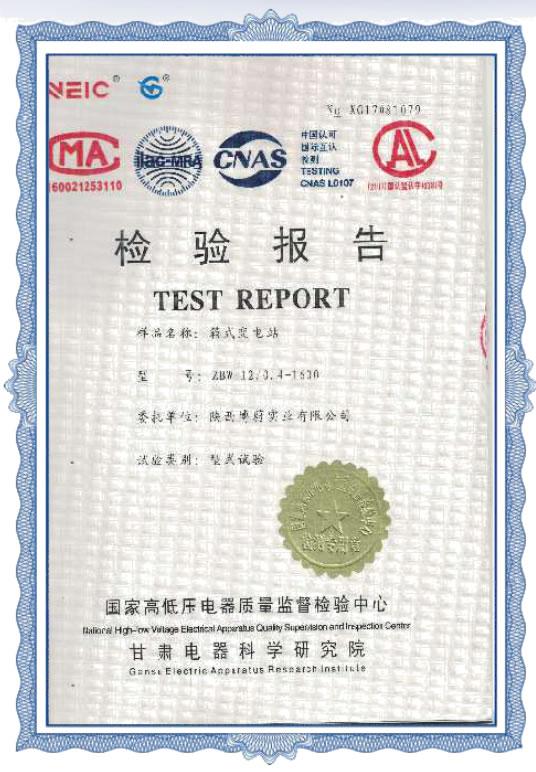 国家检验报告