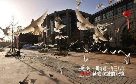 陕西博蔚实业有限公司
