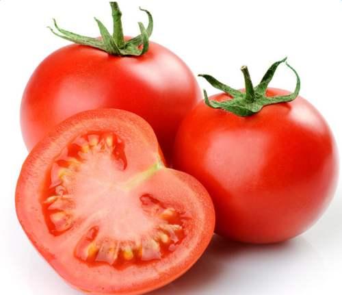 西紅柿批發