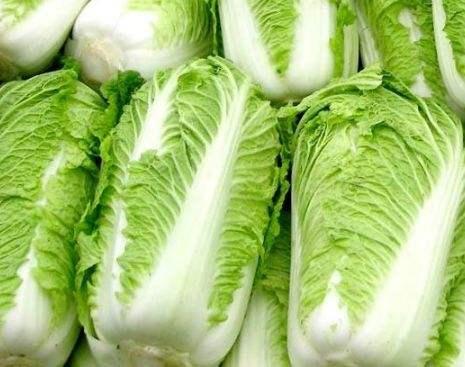 白菜的主要營養價值有哪些