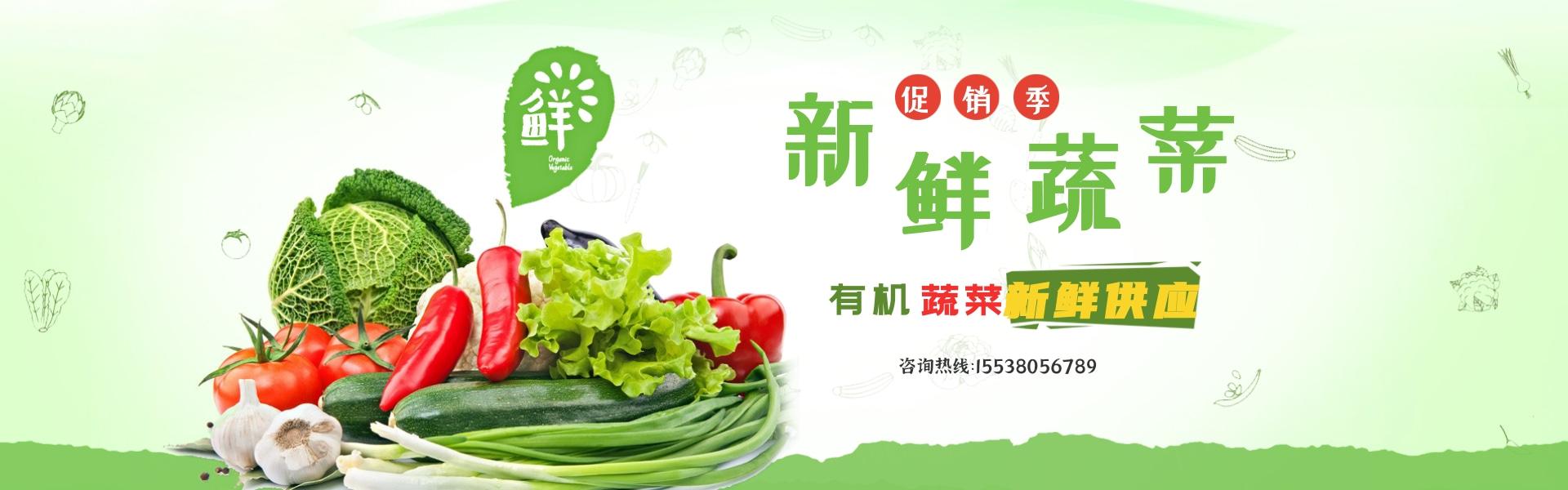 鄭州蔬菜配送