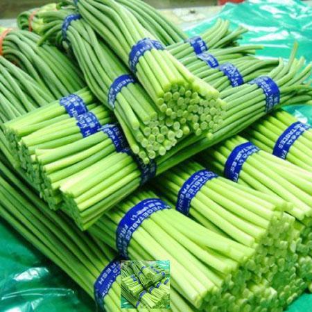 鄭州蔬菜批發分享蒜苔的功效與作用