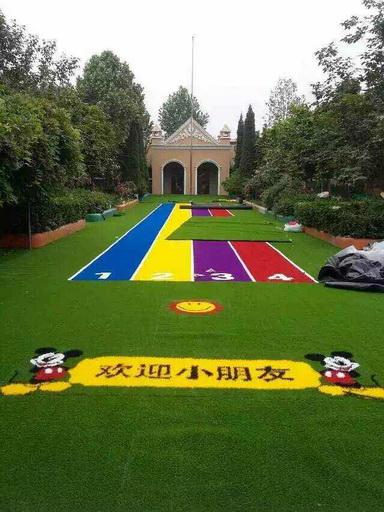 西安人造草坪和地毯的区别有哪些?