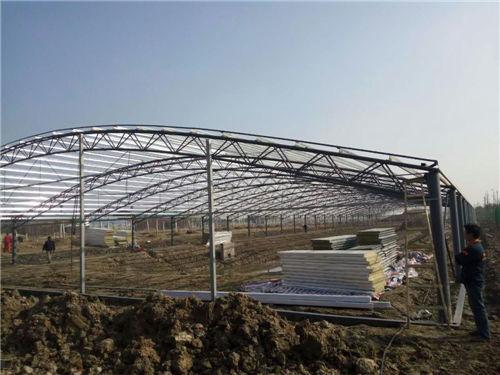 钢结构大棚施工