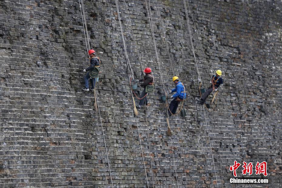 南京开展明城墙护理工作