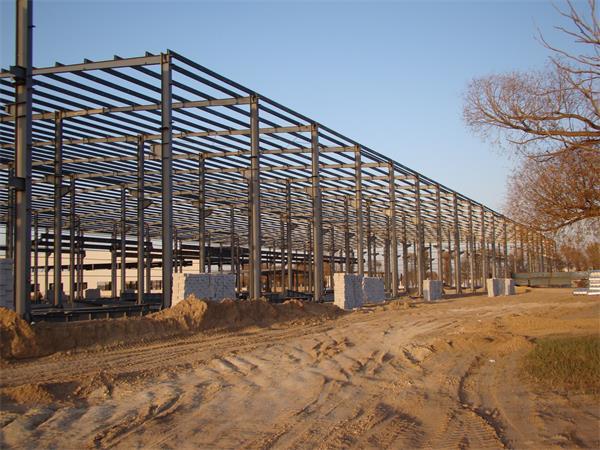 钢结构彩板厂房建设进展情况-1
