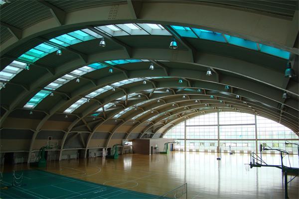 半月形钢结构篮球场馆建筑