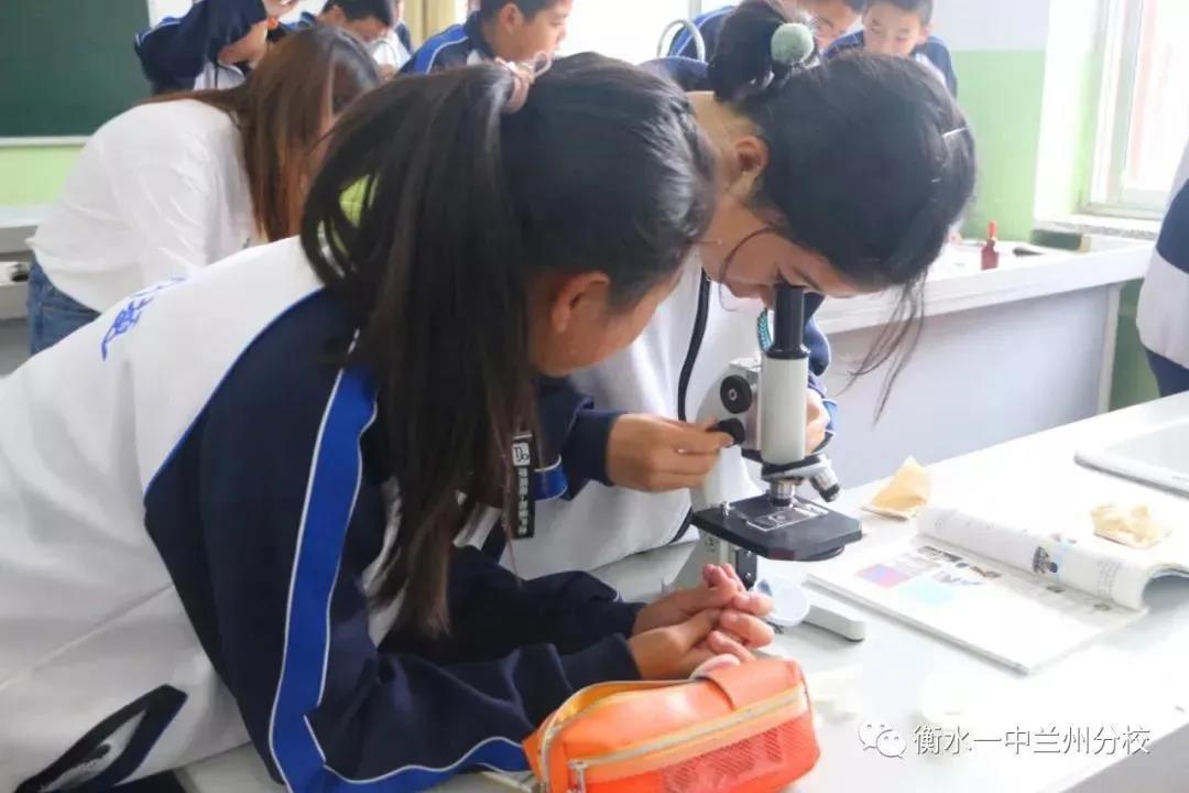 初中生物实验课
