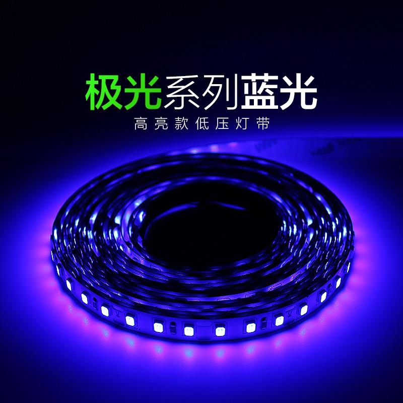 极光系列蓝光