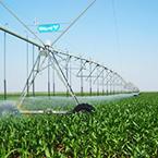 湖北智能节水灌溉控制系统