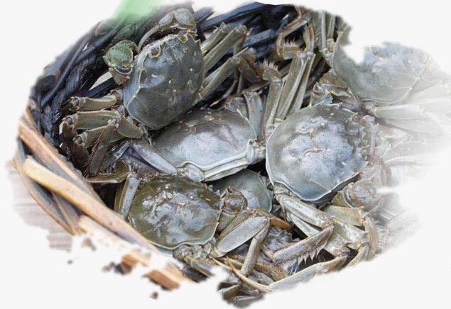 那么,大闸蟹需要蒸多久才更合适呢?