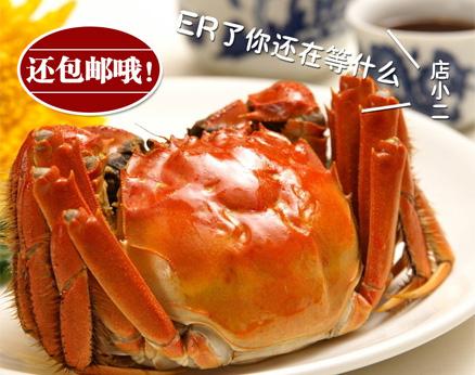 大闸蟹的口感非常好,味道非常鲜美
