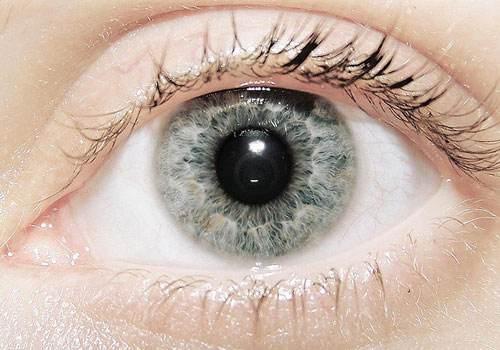 南阳耳目清新---怎么让眼睛放松?