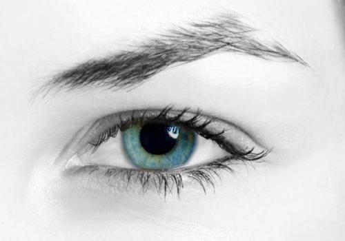 南阳耳目清新---护理眼睛小技巧