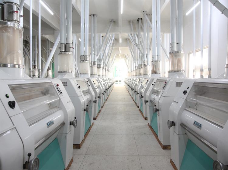 面粉生产设备