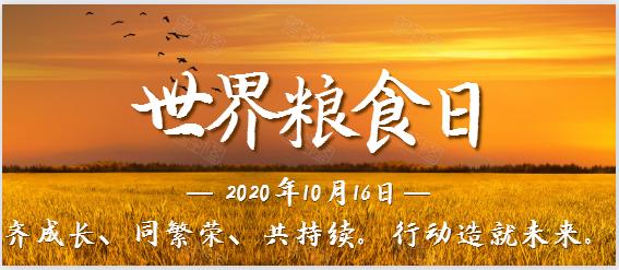 2020年世界粮食日及全国粮食安全宣传周!