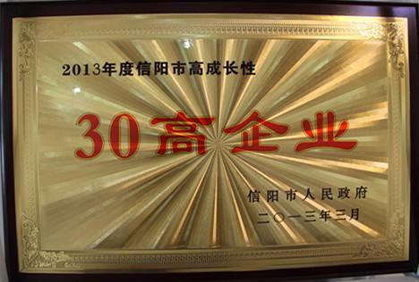 30高企业