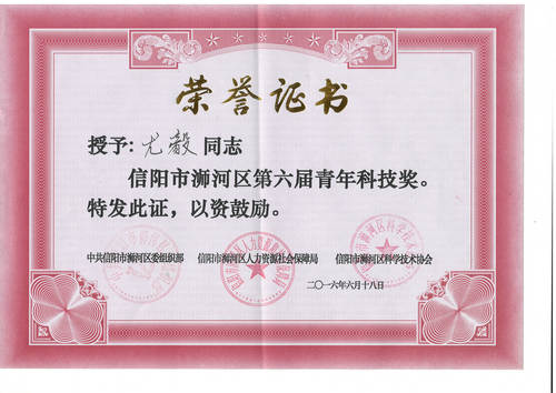 尤总第六届青年科技奖证书