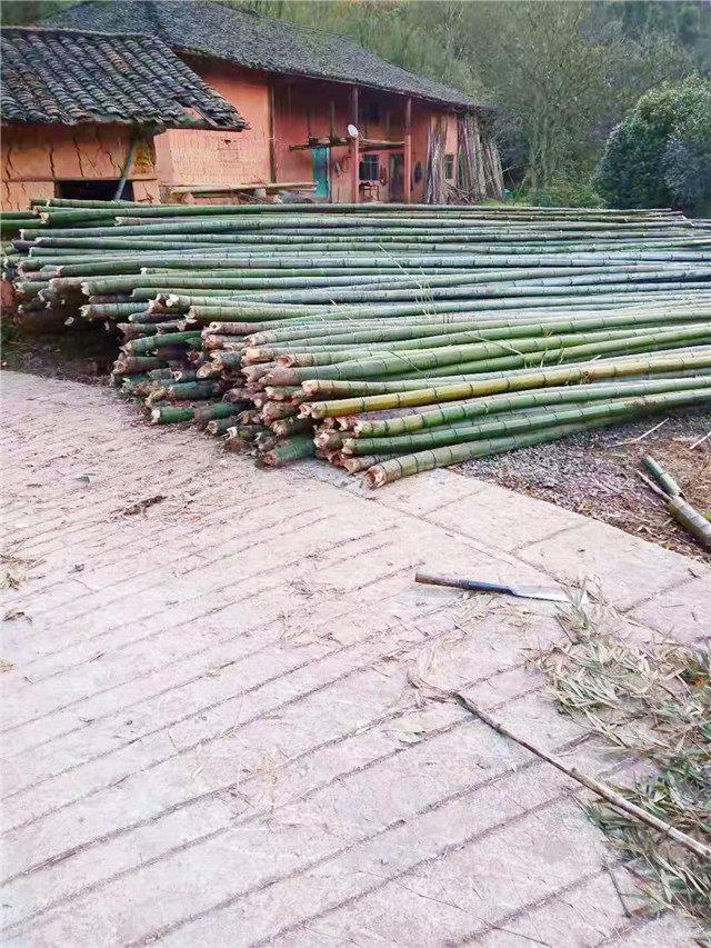 貴州赤水楠竹-大棚用竹塊