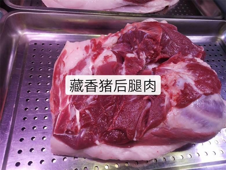 山西藏香猪养殖地址
