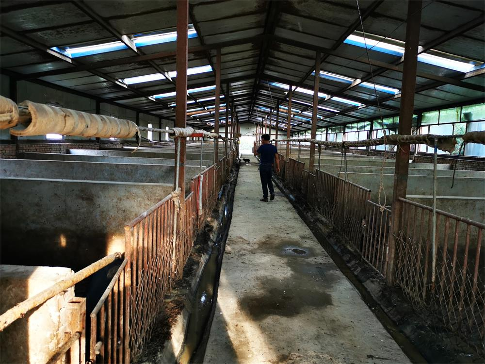 怀来绿轩苑(古农)养殖加工厂房图片_内蒙种猪生产厂家