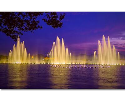 音乐喷泉常见的水型有哪些?云乾园林告诉你答案