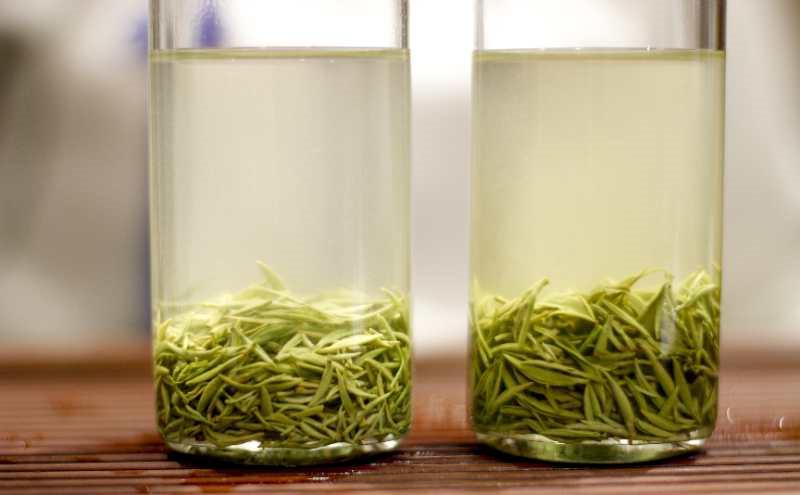 信阳高山茶的独特之处都有哪些?和普通的茶相比有何不同