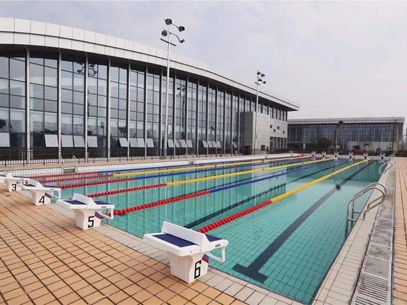 室外大型泳池
