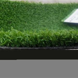 幼儿园草坪价格