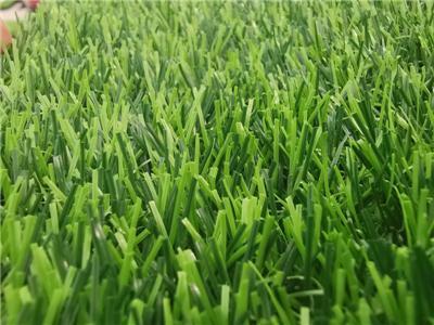 洛阳幼儿园人造草坪如何清洁和维护