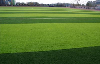 人工草坪如何小规模清洗维护