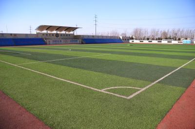 河南人造草坪由3层材料组成,基础层是由夯实土层、碎石层和沥青或混凝土层组成