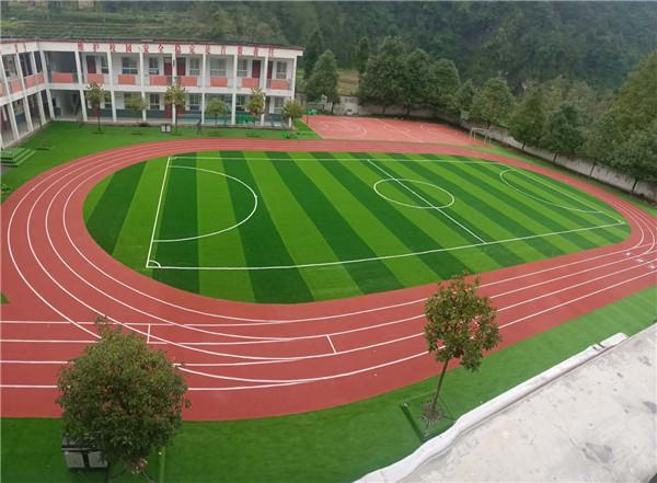 体育运动草坪