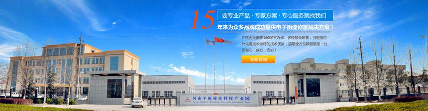 郑州电子平台秤