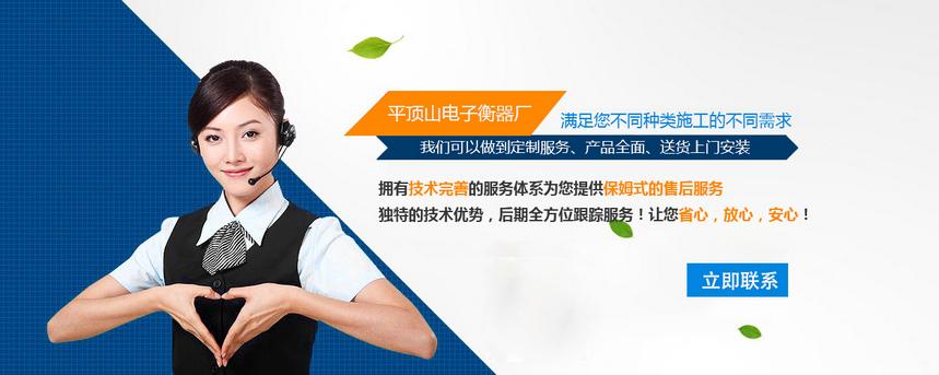 郑州电子汽车衡制造