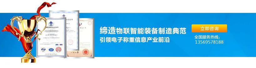 河南电子平台秤厂家