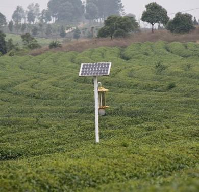 关于农业太阳能杀虫灯在实际应用中的探讨!