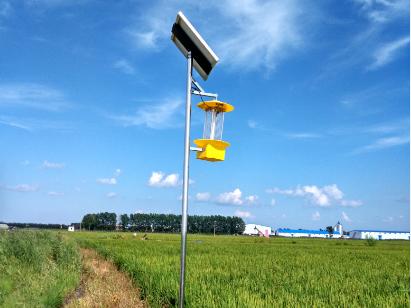 陕西农业太阳能杀虫灯实现高效杀虫!