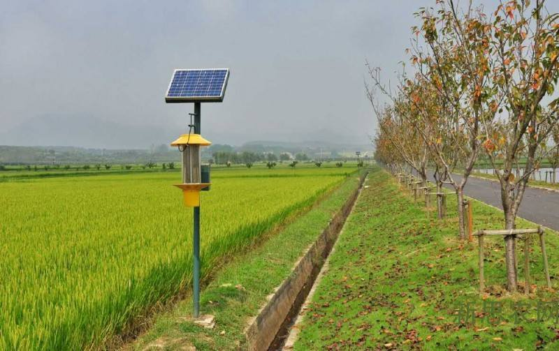 太阳能陕西农业配套设施中的杀虫灯