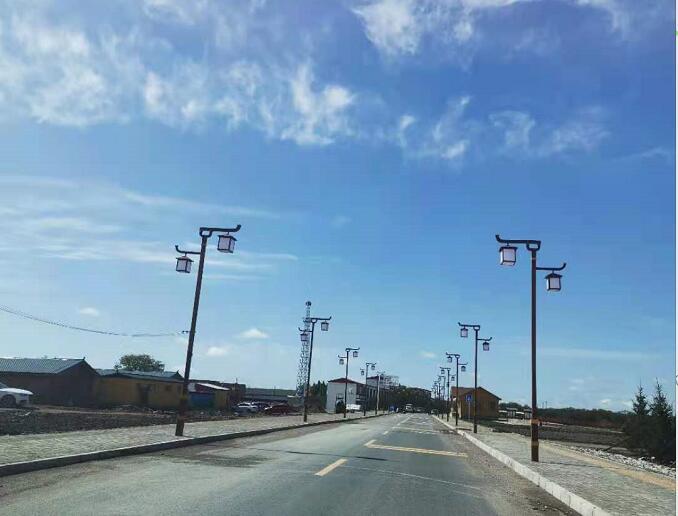 甘肃甘南太阳能路灯项目