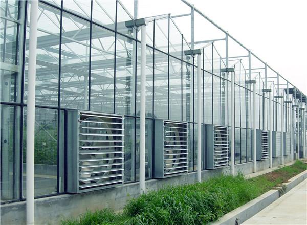 河南玻璃温室