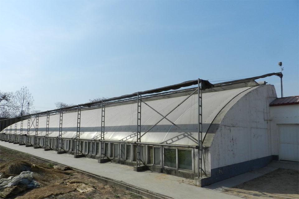 日光温室搭建