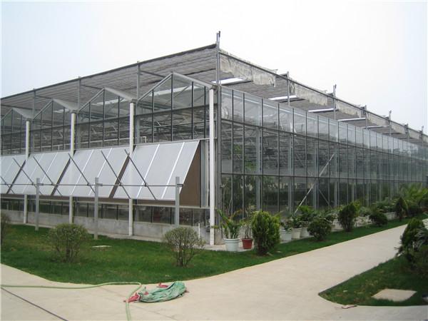 郑州盛和农业庄园智能玻璃温室