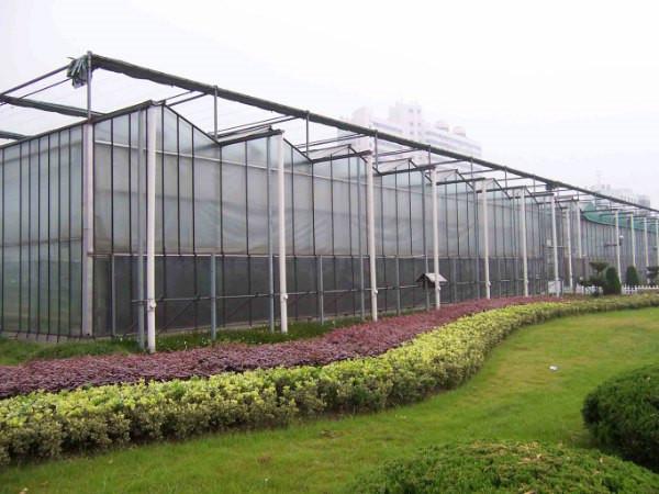 阳光板具有良好的阻燃性,在温室中使用更加的好