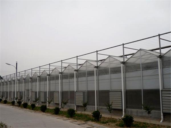 pc阳光板温室建造