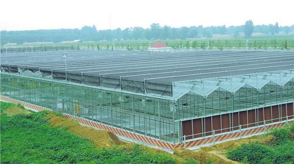 玻璃温室定制